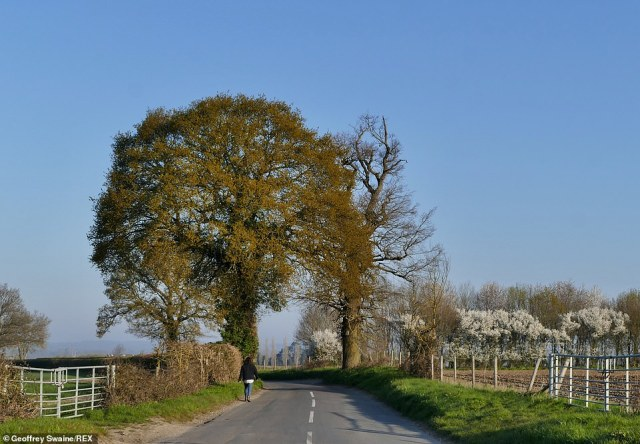 People enjoy the early mornings sunshine Seasonal weather, Dunsden, Oxfordshire, this morning ahead of a warm Monday