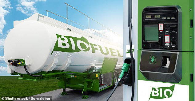 Biofuels have been suggested as an option to reduce emissions of existing vehicles - including lorries - which have a higher oil content made up primarily from plants and vegetables