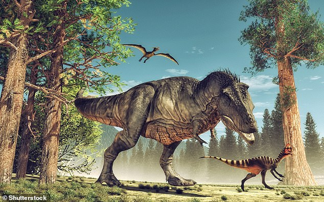 T.Rex would crunch down and ingest the bones of its prey, previousfossil evidence suggests