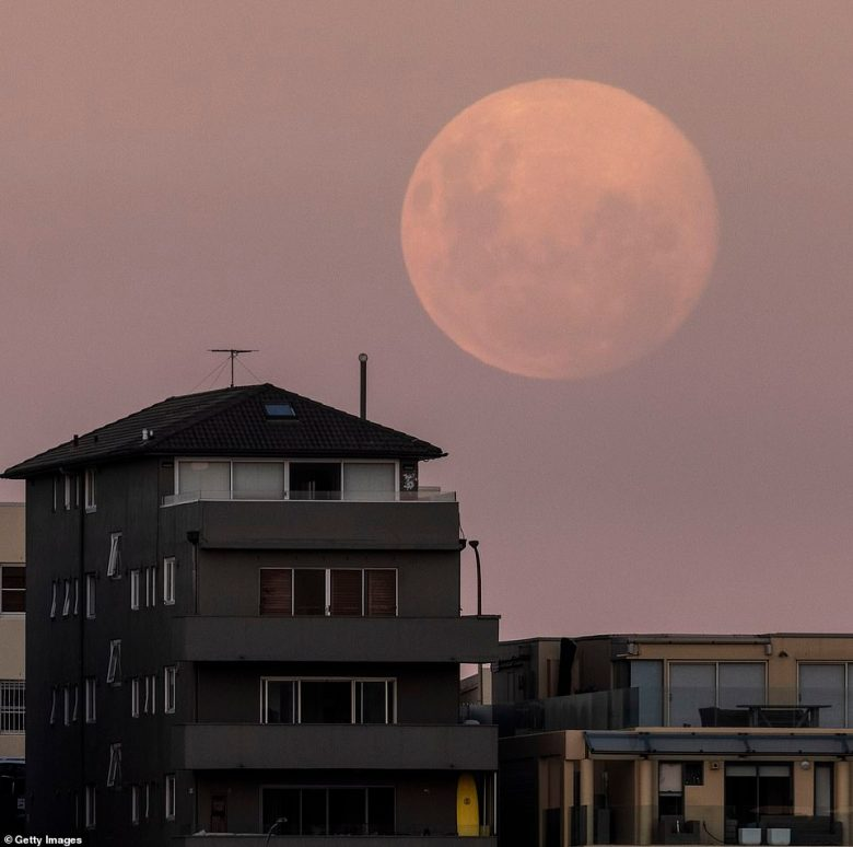 Although the peak viewing time was on Tuesday, the vibrant astrological phenomon lit up the sky over Bondi on Monday night