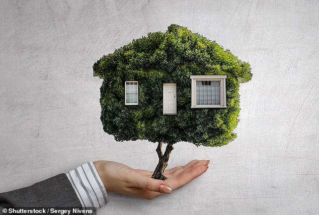 Green incentive: Nationwide building society is offering up t£500 cashback for mortgage customers buying energy efficient homes
