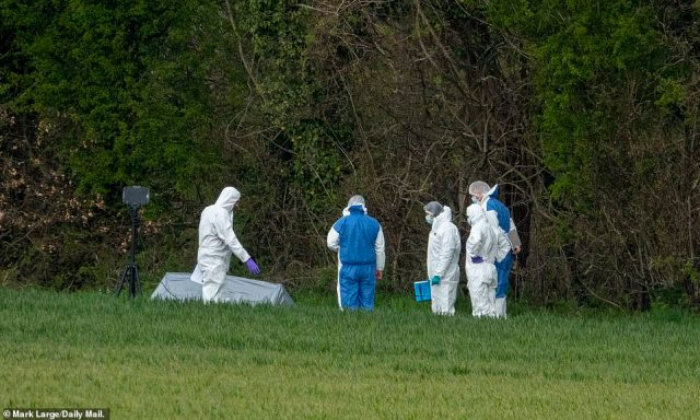 Police forensic officers search a field close to where the body of Ms James was found near Aylesham Road, Snowdown, Kent