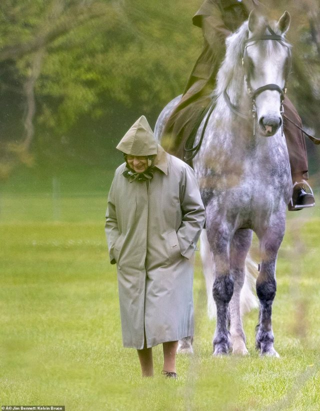 The monarch's passion for horses was clearly on show, and she could be seen beaming while inspecting the animals