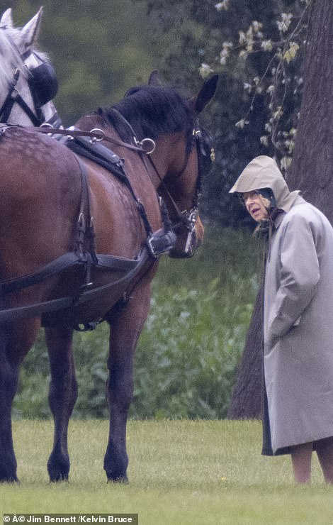 The monarch opted to wear a longline rain mac for the occasion and stayed dry beneath a hood, which she tied beneath her chin