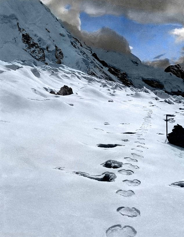 The Daily Mail is financing and organising an expedition to the region of Everest in an attempt to solve the great mystery of the Himalaya — the identity of the Yeti, or Abominable Snowman