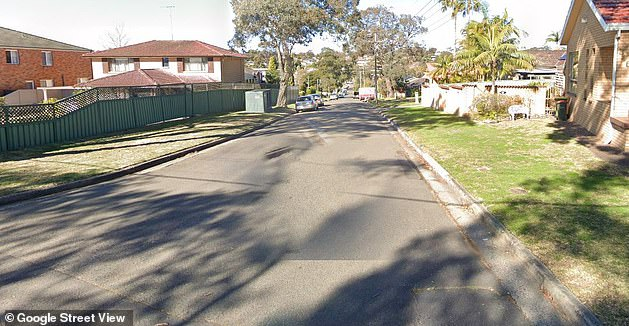 A 27-year-old woman was rushed to hospital in a critical condition after being hit by a car inAsh Avenue in Caringbah South early on Sunday morning (the street is pictured)