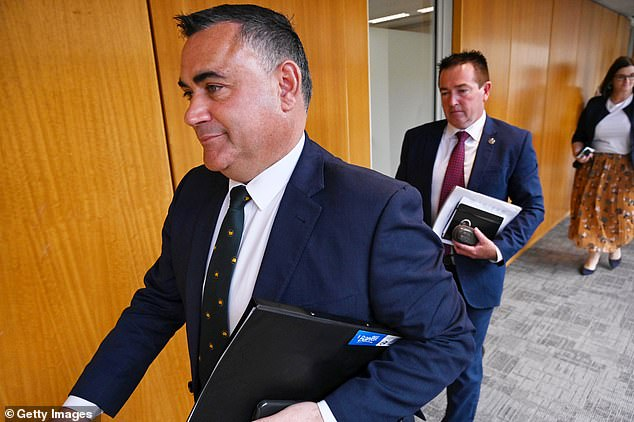 Regional Roads Minister Paul Toole (right) said the tunnel would be 'Northconnex but better' while Deputy Premier John Barilaro (left) said the government is 'working hard to make it happen'
