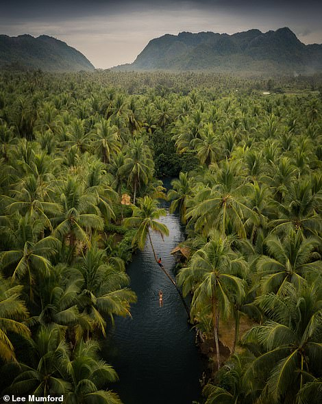 In this amazing image of the Maasin River on the island of Siargao in the Philippines, two people can (just about) be made out playing on an overhanging coconut tree