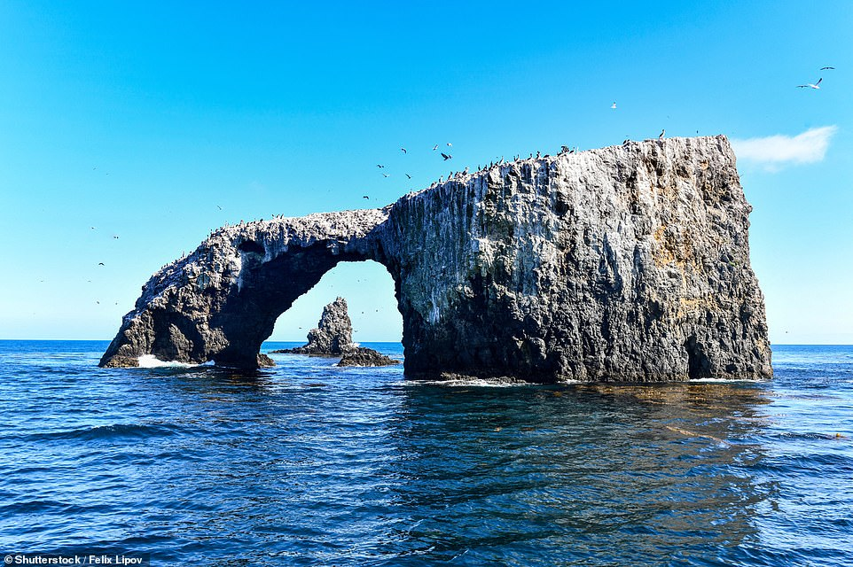 Arch Rock is located off the coast of Anacapa Island in California's Channel Islands National Park. It takes around an hour to get to the island from the mainland by boat. The natural bridge, which is 40ft (12m) high, attracts thousands of nesting birds