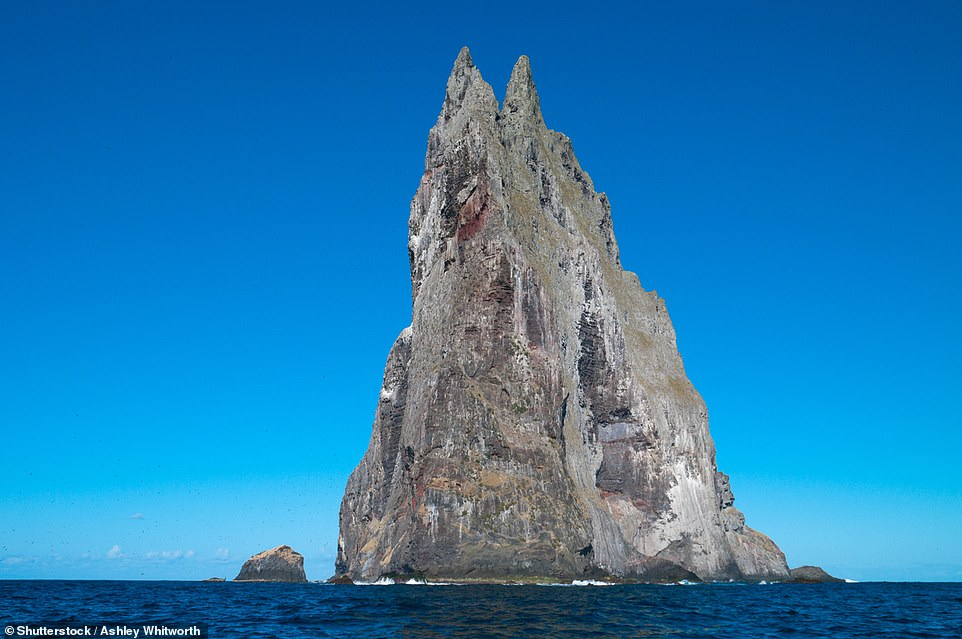 Ball's Pyramid,located off Lord Howe Island in Australia, is 1,843ft (561m) tall, making it the world's tallest sea stack. The waters surrounding the basalt spire are popular with divers as it is home to many rare species, including the Spanish dancer sea slug and the ballina angelfish