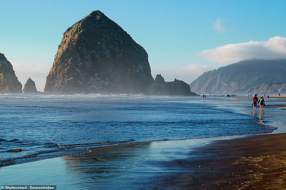 Haystack Rock is a popular landmark on the north coast of Oregon in the U.S. The mammoth rock, which rises 235ft (71.6m) from the edge of Cannon Beach, can be navigated on foot at low tide. Puffins can be observed on Haystack Rock from early spring to mid-summer and its rock pools are home to species including starfish, anemone, crabs, and nudibranch molluscs