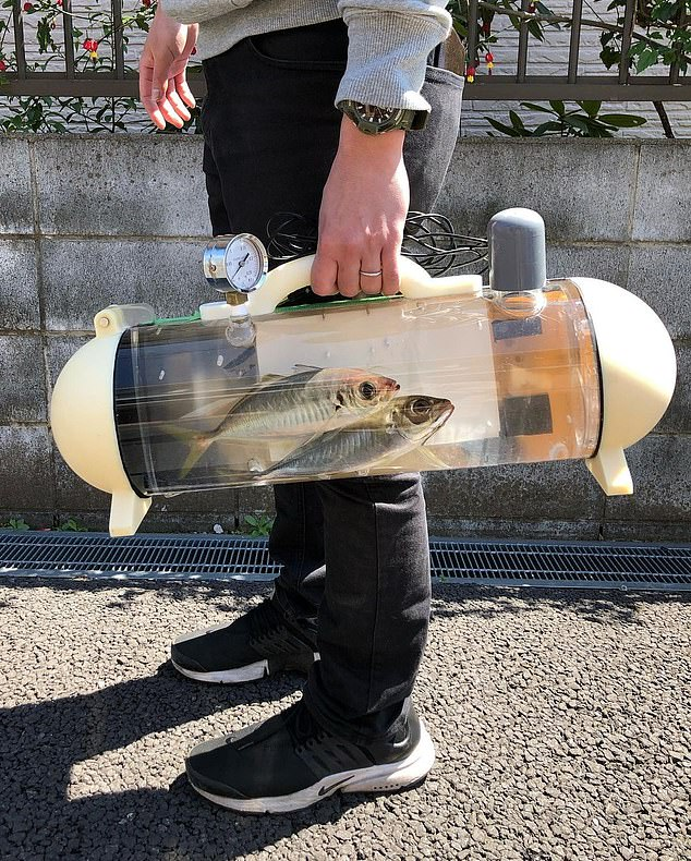 The product allows users to carry around their pet fish or any aquamarine animal bought at a market