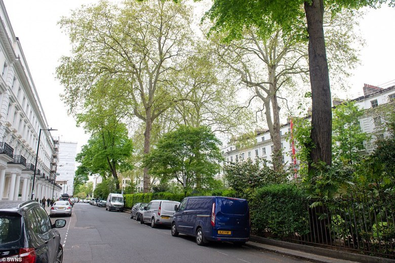 'This asset offers something that so many people, who live in London want, which makes it a once in a generation opportunity to become the owner of a one-acre garden in central London, MrHawkesbury said