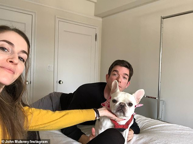 Fur baby: It's unclear which one will retain primary custody of their beloved eight-year-old French Bulldog Petunia Tendler-Mulaney(pictured in 2019)