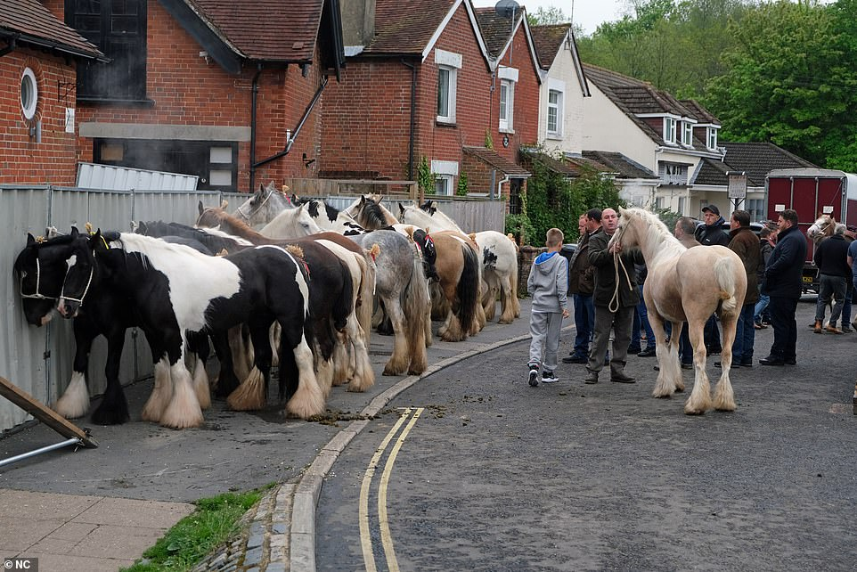 But traveller families descended with their horses on the Hampshire town in defiance of the ban on attending