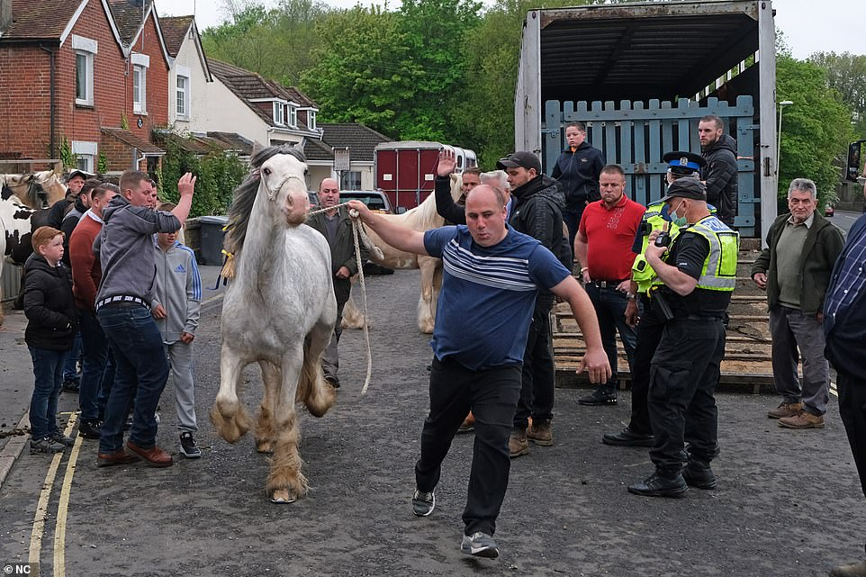 Crowds of travellers have descended on Wickham in defiance of a ban on the village's historic 750-year-old horse fair