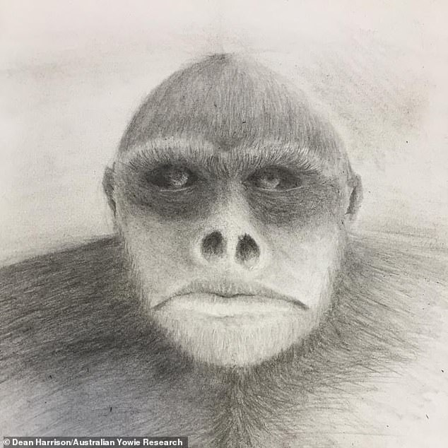 Yowies have their roots in Aboriginal folk tales and now have thousands of believers, who say it resembles the Big Foot. Pictured: A drawing of a Yowie