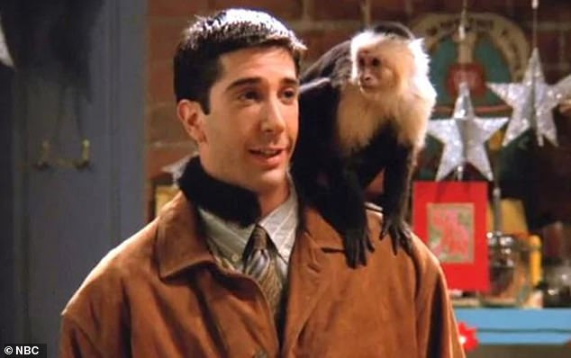 Yikes! David Schwimmer recalled a less than lovely time working with Marcel the monkey as he chatted with his co-stars on Friends: The Reunion
