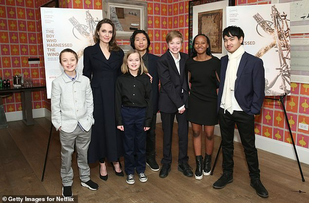 Gloating: 'It's sad that Brad's people are gloating about a potential win when beating a system that exists to protect families and children from issues that harm their well-being is not something to brag about,' a source close to her said; seen with (L-R) Knox, Vivienne, Pax, Shiloh, Zahara and Maddox