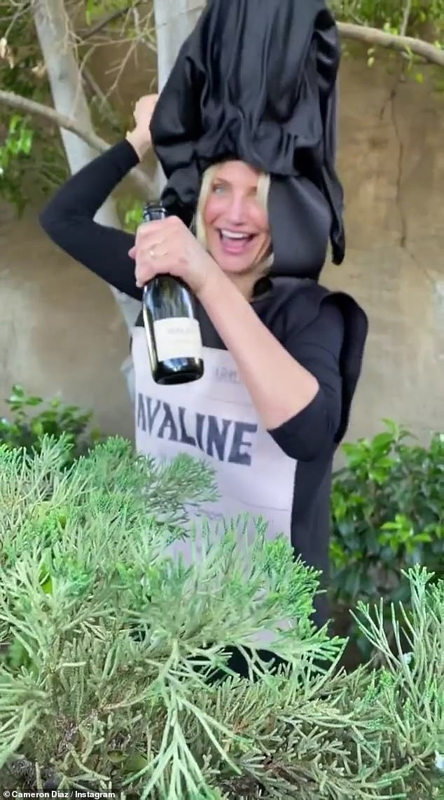 All for laughs: The Charlie's Angel actress also donned a Avaline wine bottle costume