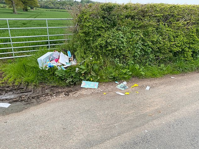 For the past three years, Lord Shrewsbury, whose family once owned Alton Towers, now a theme park, has been picking up 'a black bin-liner's worth of litter, possibly more', almost every week on the same mile-long stretch of lane