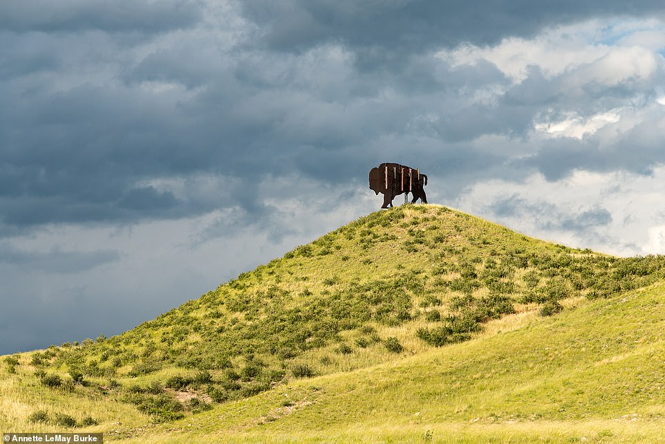 A sculpture of a bison hides a phone tower at the Wyoming/Colorado border