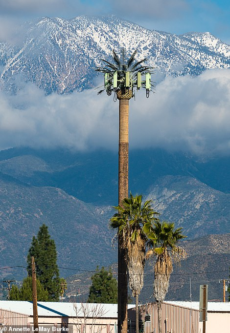 This picture was taken in Calimesa, California