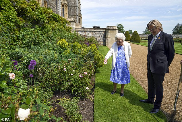 When she looks out of the window of her private apartments, the 95-year-old monarch will now see a beautiful 'Duke of Edinburgh' rose, planted in the East Terrace Garden (pictured)