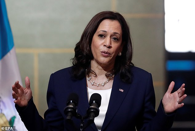 The new numbers come on the heels of Vice President Kamala Harris' trip to Guatemala and Mexico. Administration officials are 'perplexed' at some of the conflicting statements made on her first foreign trip in office