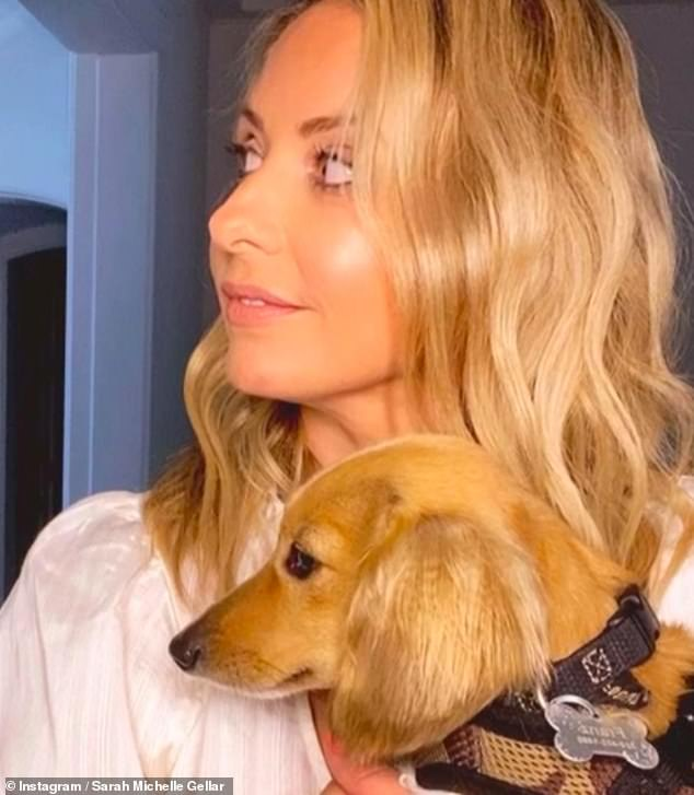 'They say that dogs and their humans begin to look alike¿' Actress Sarah Michelle Gellar compared her looks to her Daschund Franz in a hilarious Instagram snap posted on Wednesday