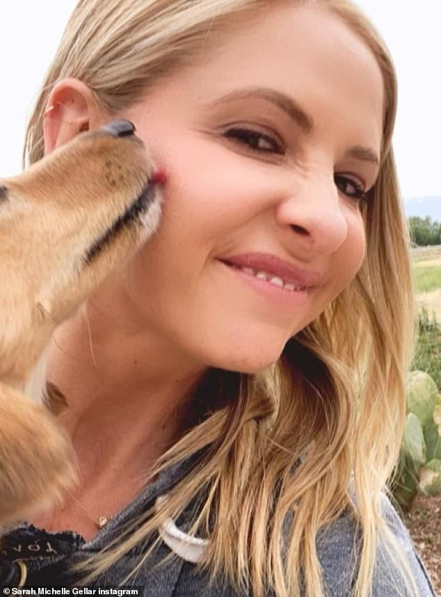 Proving they're inseparable: Gellar also shared this snap with dog Franz on a farm in New Mexico. Franz lovingly gives his owner a lick on the cheek