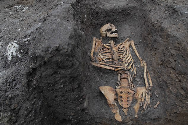 The skeletons (including the one pictured) came from four burial sites around Cambridge