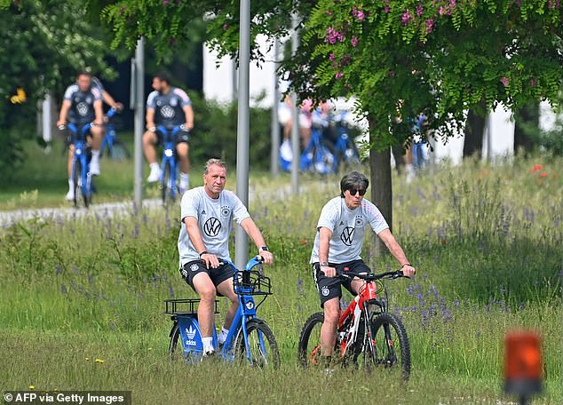 Joachim Low (pictured right) has come under immense pressure and will quit after the Euros