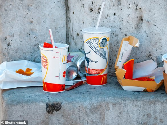 By brand, McDonald's was the most common source of waste, accounting for coffee cups and discarded food packaging
