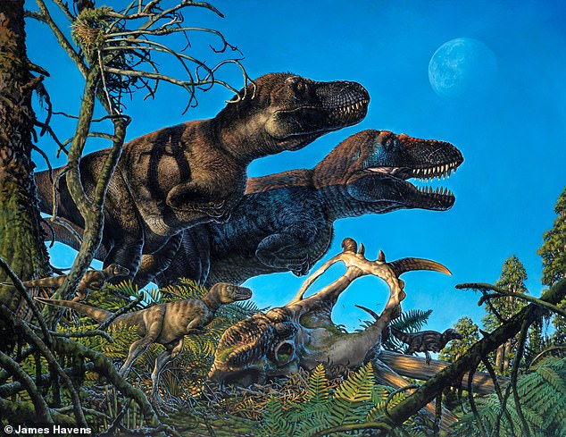 A dinosaur nursery once used by seven different species including tyrannosaurs and 'polar bear lizards' has been found in an unexpectedly chilly location — the Arctic. Pictured: an artist's impression of thetyrannosaur Nanuqsaurus with its young offspring