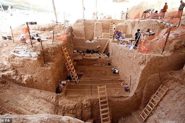 The remains were found during a dig (pictured) in the mining area of the Nesher cement plant. Digging 26 feet down, the researchers also found large quantities of animals bones — including horses, fallow deer and and ox-like aurochs — and stone tools