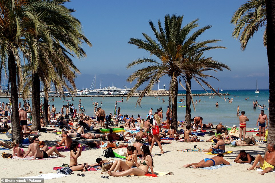 Mallorca (pictured:Beach El Arenal) is one of the top holiday hotspots to be put on the UK's green travel list by Grant Shapps