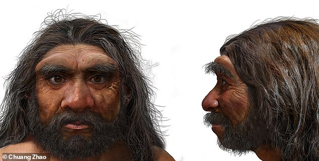 Dragon Man (depicted) would have held a brain comparable in size to that of modern humans, but sported big, almost square eye sockets, thick brow ridges, a wide mouth and larger teeth