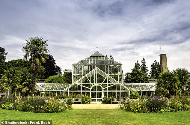 Cambridge's Botanic Gardens has plants from all over the world in grounds covering 40 acres