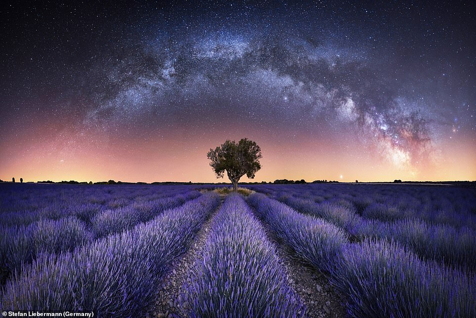 Harmony by Stefan Liebermann is a panorama of the Milky Way over the lavender fields in Valensole, France