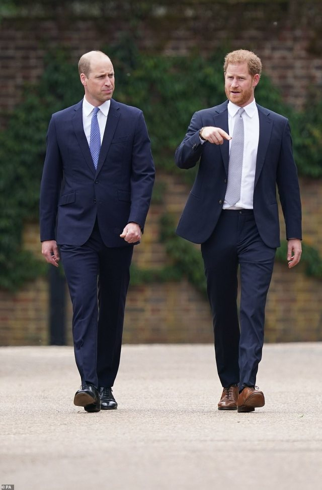 The Duke of Cambridge and Duke of Sussex arrive for the unveiling, putting aside any differences they've faced