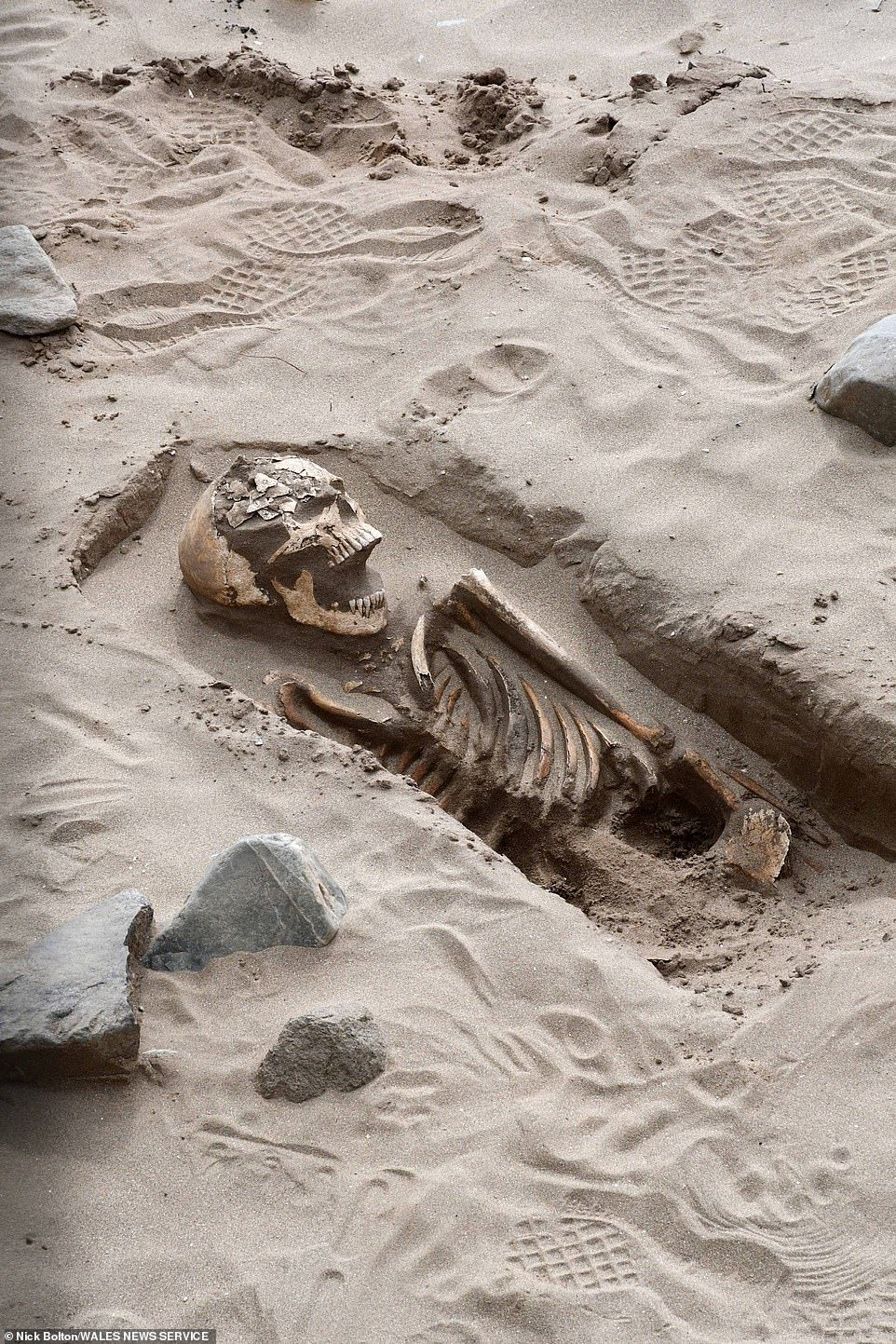 Preservation of the bones is 'absolutely incredible' because the skeletons have been immersed in sand, according toDyfed Archaeological Trust