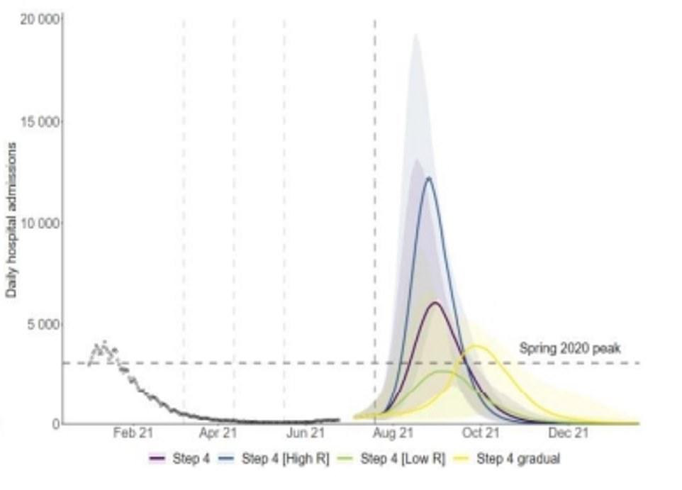 In a worst-case scenario daily hospitalisations could soar beyond 12,000, according to modelling by Imperial College London, headed by 'Professor Lockdown' Neil Ferguson, who was instrumental in the initial shutdown last spring. This model assumed that people who are unvaccinated and were previously infected with the Kent variant are still susceptible to catching the Indian strain, which would scupper hopes that Britain can get to herd immunity through a combination of natural infections and vaccinations this winter