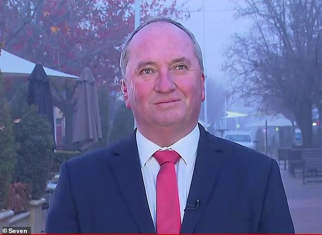 Deputy Prime Minister Barnaby Joyce said on ABC's Insiders: 'I'm the one who wanted to send home Johnny Depp's dogs home so I have no problem sending home someone who wants to flout our laws'