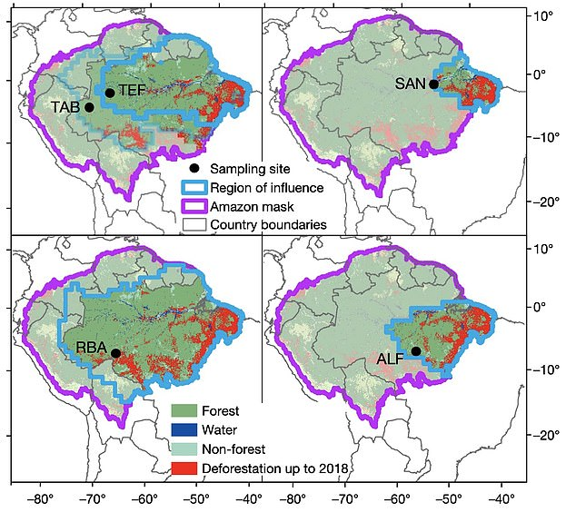A combination of fires and logging in the rainforest has seen large regions switch from being an essential 'carbon sink' to being a carbon emitter, National Institute for Space Research in Sao Jose dos Campos, Brazil researchers discovered