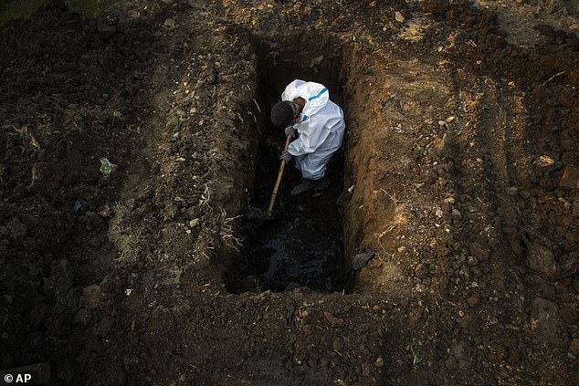Pictured: A man in protective suit digs earth to bury the body of a person who died of COVID-19 in Gauhati, India, April 25, 2021. The new study - which analysed data from the start of the pandemic to June this year - suggested that between 3.4 million and 4.7 million people had died from the virus