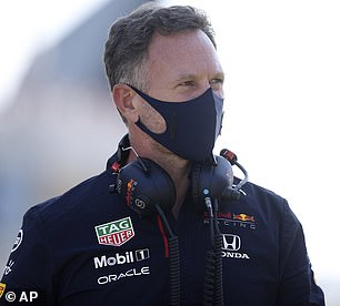 Christian Horner has been accused of giving ¿racists an excuse to let fly their vitriol and evil¿