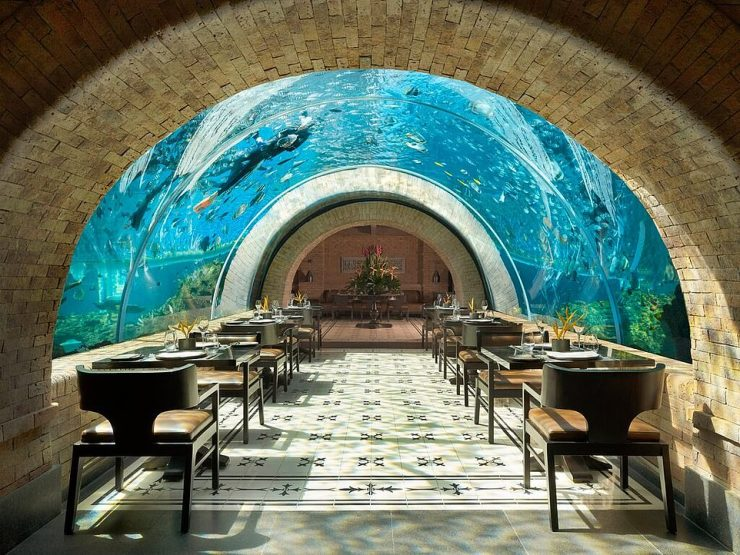 Instagrammers take note - Koral Restaurant in Nusa Dua, Bali, has been crowned world number one in the Picture-Perfect category. Tripadvisor says of the venue: 'At this epic aquarium restaurant you'll feel as though you're dining underwater as tropical fish swim around and above you and a hypnotic soundtrack plays to complete the full below-the-waves experience'