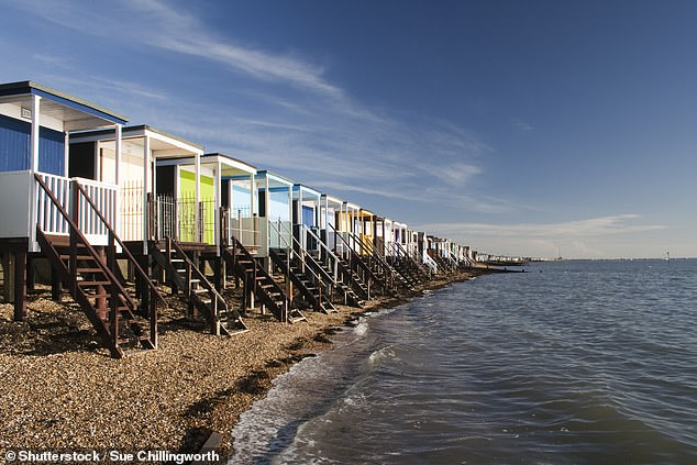 The incident took place as Sadie played in the sand near the beach huts at Thorpe Bay, Essex (pictured)