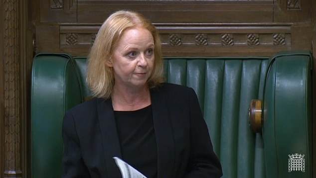 Ms Butler was asked to retract her comments - which violated parliamentary etiquette rules - by fellow Labor MP Judith Cummins (pictured), who chaired the session